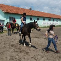 More practical skills with horses