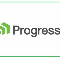Партньори за прогрес