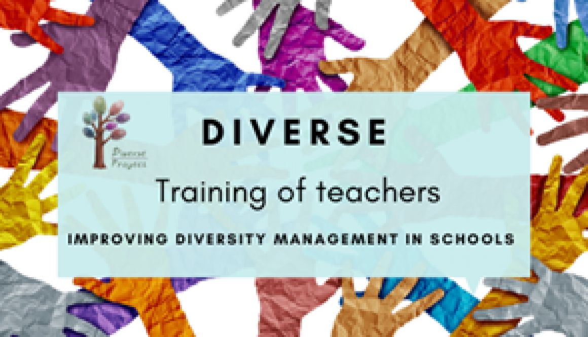 DIVERSE project offers new opportunities for teachers